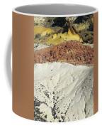 File4893 Eliot Porter Coffee Mug