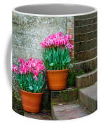 Filoli Tulips Coffee Mug