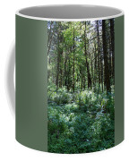 Filtered Forest Sunlight In Oregon Coffee Mug