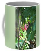 Filtered Red Coffee Mug