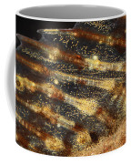 Fin Of Shorthorn Sculpin Coffee Mug