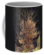 Final Fall Coffee Mug