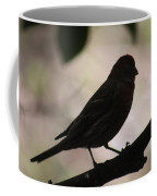 Finch Shadow 042814e Coffee Mug