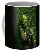 Finding The Right Path Coffee Mug
