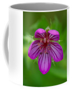 Finding Truth In Nature Coffee Mug