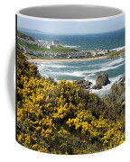 Findochty In Spring Coffee Mug