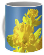 Fine Art Daffodils Floral Spring Flowers Art Prints Canvas Baslee Troutman Coffee Mug