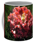 Fire Color Succulent. Curly Plant, Exotic Coffee Mug
