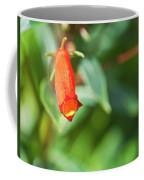 Firecracker Blossom Coffee Mug