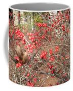 Firethorn Bushes Coffee Mug