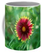 Firewheel In The Green Coffee Mug