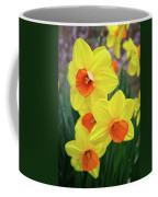 First Arrivals Of Spring Coffee Mug