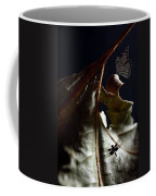 First Light Coffee Mug