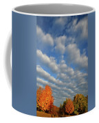 First Light On Glacial Park Sugar Maples Coffee Mug