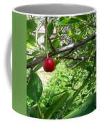 First Of The Season Coffee Mug by Deleas Kilgore