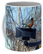 First Robin Coffee Mug