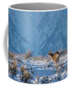 First Rut Mule Deer Buck Coffee Mug