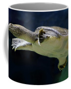 Fish 36 Coffee Mug