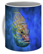 Fish Frown Story Coffee Mug