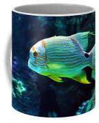 Fish No.3 Coffee Mug