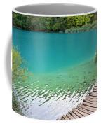 Fish Of Kaluderovac Lake Coffee Mug