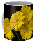 Five Gerbera Daisies Coffee Mug
