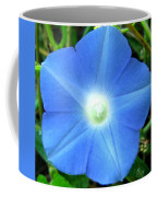 Five Point Star Morning Glory  Coffee Mug