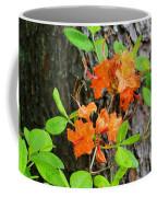 Flame Azaleas Coffee Mug