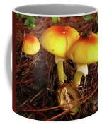 Flame Pluteus Mushroom  Coffee Mug