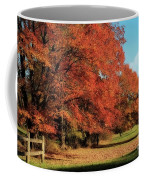 Flame Trees Coffee Mug