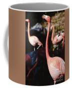 Flamingo 3 Coffee Mug