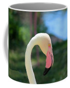 Flamingo Closeup Coffee Mug
