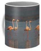 Flamingo During Sunset Coffee Mug