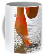 Flamingo Feeding Coffee Mug