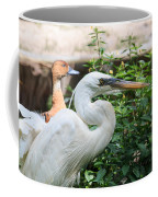 Flamingo Gardens - Great Egret Profile Coffee Mug
