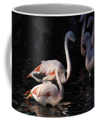 Flamingo Study - 2 Coffee Mug