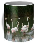 Flamingoes And Their Reflections Coffee Mug