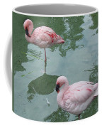 Flamingoes Posing Coffee Mug
