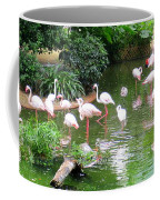 Flamingos 4 Coffee Mug