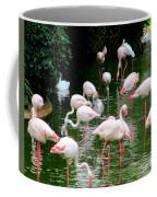 Flamingos 6 Coffee Mug
