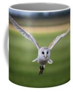 Flight Of The Barn Owl Coffee Mug