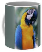 Flirtacious Macaw Coffee Mug