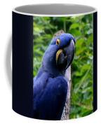 Flirty Birdy Coffee Mug