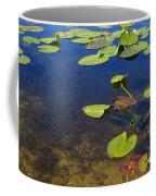 Floating Leaves Coffee Mug