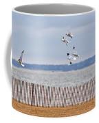 Flock Of Gulls Coffee Mug