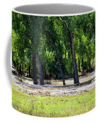 Flood Plain Coffee Mug