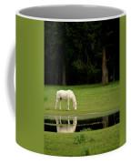 Flooded Field In May Coffee Mug