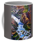 Floodstage Coffee Mug