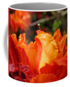 Floral Art Prints Orange Rhodies Rhododendrons Baslee Troutman Coffee Mug