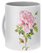 Floral Botanicals-jp3779 Coffee Mug